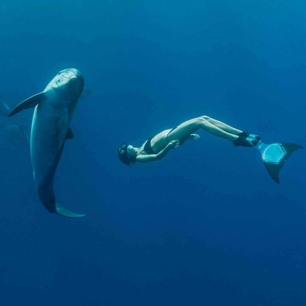 atividade mergulho livre meditativo