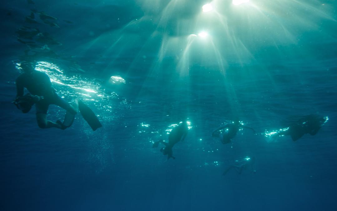 Expedição Atlantis e a conexão com o azul profundo